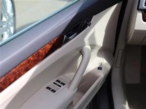 Passat door pull