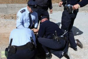 meathead cop 2