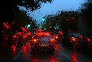 rain clover 1