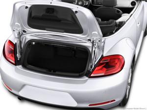 '14 Beetle trunk