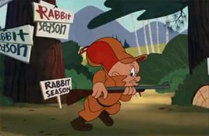 rabbit season!