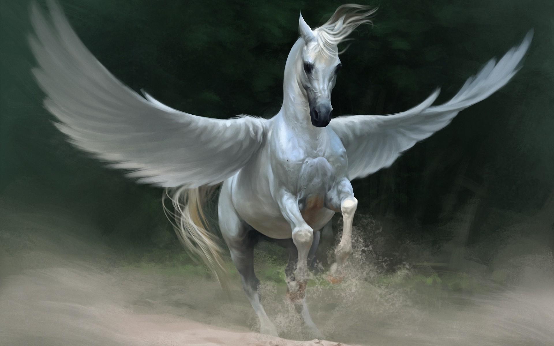Pegasi  Pegasus-lead