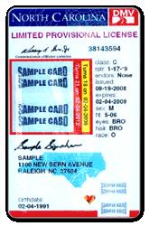 license pic 2