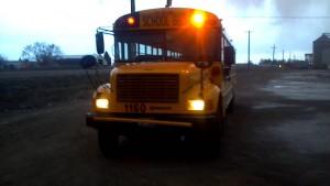 bus lead