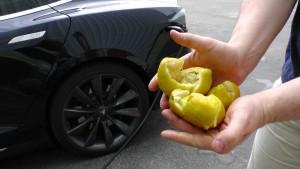 Tesla lemons pic