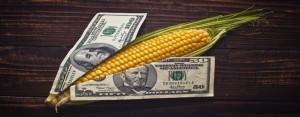 corn lobby
