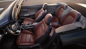 '16 Mustang convertible