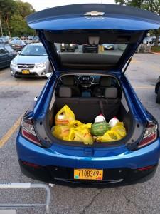 '17 Volt trunk