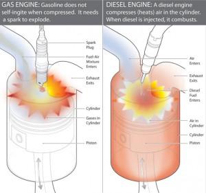 diesel vs. gas image