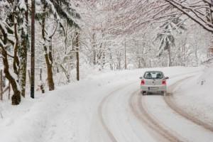 snow-lead